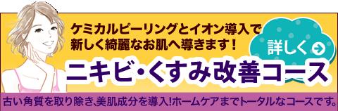 ニキビ・くすみ改善コース